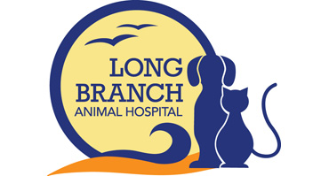 Pier Fest sponsor Long Branch Animal Hospital